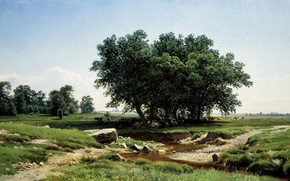Wallpaper picture, Shishkin, In the shadows