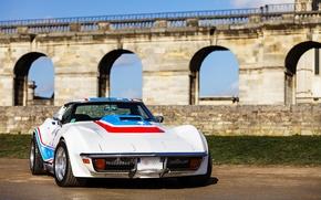 Picture Corvette, Chevrolet, muscle car, Corvette, Stingray
