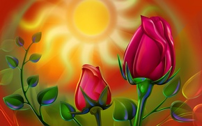 Picture the sun, figure, roses, picture, stem, Bud