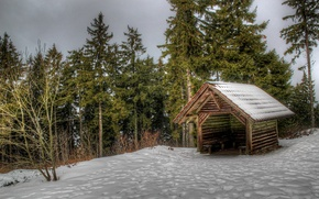 Picture winter, forest, snow, trees, Germany, house, Oppenau