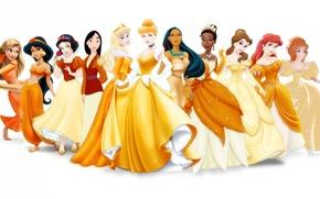 Picture Rapunzel, Giselle, Ariel, disney, Princess, Jasmine, Mulan, Sleeping beauty, Tiana, Belle, Cinderella, Pocahontas, Snow white, …