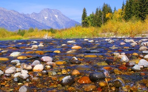 Picture autumn, the sky, trees, mountains, river, stones