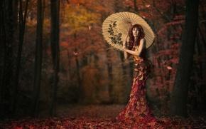 Picture leaves, girl, umbrella