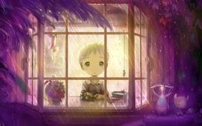 Picture Boy, Rain, Window