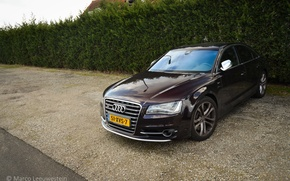 Picture Audi, Quattro, W12, S8