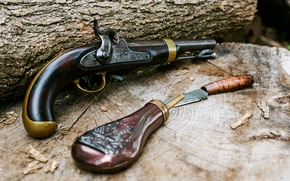Picture retro, gun, weapons, tree, knife, vintage