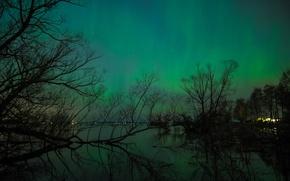 Picture landscape, night, lights, lights