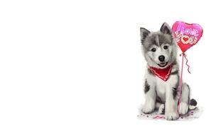 Picture holiday, ball, art, puppy, bandana, children's, lorri kajenn the