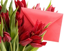 Wallpaper spring, beautiful, Spring, bouquet, lovely, the envelope, March 8, tulips, Tulips, romance, letter, red
