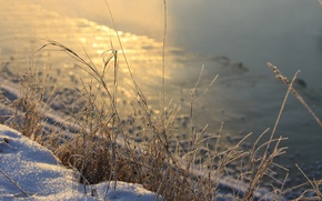 Picture winter, grass, snow, river