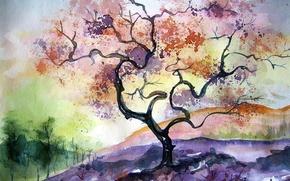 Picture autumn, nature, art, watercolor