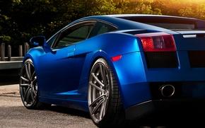Picture Lamborghini, Gallardo, blue, Lamborghini, Gallardo