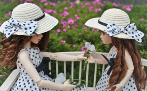 Picture flowers, doll, doll, polka dot, hats, bows, doll, BJD, evolusi