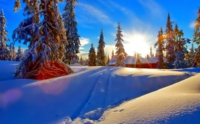 Wallpaper spruce, snow, winter, house, clouds, the sky, forest, sunset