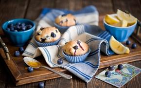 Picture lemon, food, Breakfast, lemon, fruit, food, fruit, sweet, cupcakes, breakfast, muffins, cranberry, cranberries