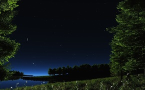Wallpaper greens, the sky, grass, water, stars, landscape, flowers, night, nature, lake, pond, river, the moon, ...