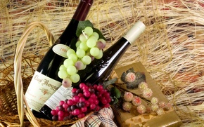 Picture gift, wine, basket, grapes, muffler