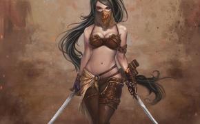 Picture girl, warrior, swords, Dragon Soul