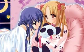 Picture night, toy, anime, window, art, Panda, girl, friend