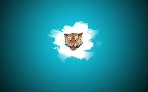 Picture blue, Tiger, Head, Blot, white tiger, post, minimalism