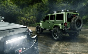 Picture Light, Jungle, Cars, Green, Black, Rain, Wrangler, Jeep, Rear, Off Road