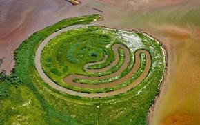 Picture Netherlands, installation, Paul de Kort, De Biesbosch National Park