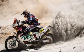 Picture Sand, Sport, Motorcycle, Racer, Red Bull, Dakar, Two wheels