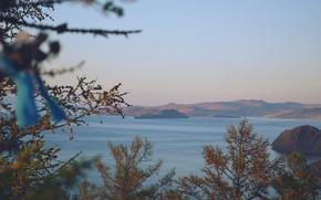 Picture summer, lake, Tree, Baikal