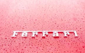 Wallpaper F458, Ferrari, letters, Ferrari, 458, drop, drops