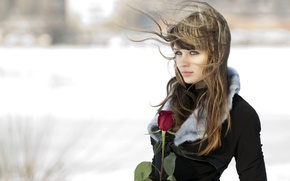 Picture girl, background, rose