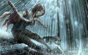 Picture gun, rain, wolf, Tomb raider