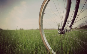 Picture greens, grass, nature, bike, background, mood, wheel, widescreen, full screen, HD wallpapers, widescreen