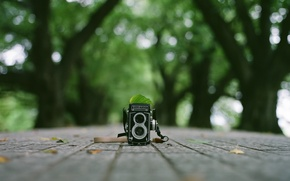 Picture background, camera, Rolleifex