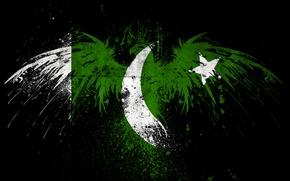 Picture Eagle, Flag, Pakistan, PCbots