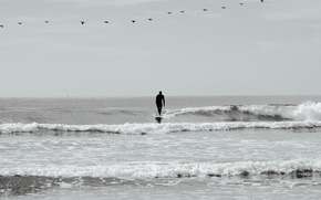 Picture sea, wave, boats, surfer, surfing, surfboard, rainy, Longboard, pelicans extreme sports