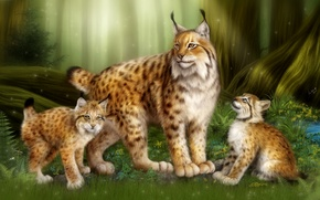 Picture forest, cats, children, family, kittens, lynx, mom