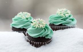 Picture winter, snow, snowflakes, sweets, cream, dessert, sweet, cupcakes