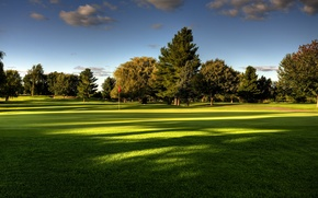 Picture summer, the sky, grass, trees, nature, Golf course
