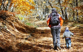 Picture child, adult, Forest, Hiking, father and son