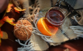 Picture autumn, heat, mood, tea, oranges, plaid, autumn, tea