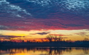 Picture the sky, clouds, trees, sunset, lake, reflection, the evening, USA