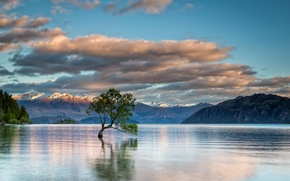 Picture mountains, nature, lake, tree