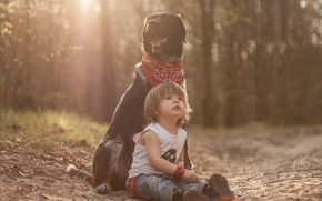 Picture dog, boy, friends, dog