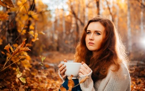Picture autumn, leaves, girl, branches, nature, jeans, mug, Cup, brown hair, sweater