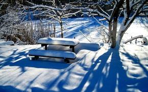 Wallpaper tree, table, snow, winter, bench, yard