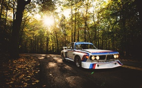 Picture road, auto, forest, BMW, BMW, white, racing