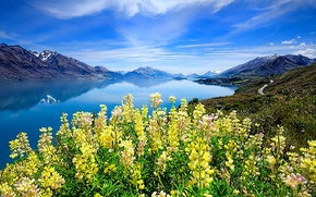Picture the sky, clouds, flowers, mountains, lake