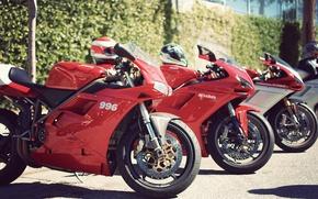 Picture ducati, sportbike, 996, 1098
