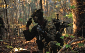 Picture forest, weapons, sign, soldiers, sea, infantry