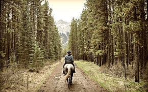 Picture road, forest, mountains, rider